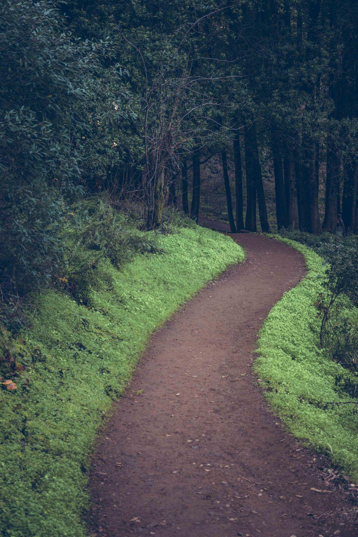 1103_Path