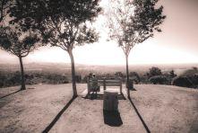 Environmental portrait monochrome sepia boy bench bay area
