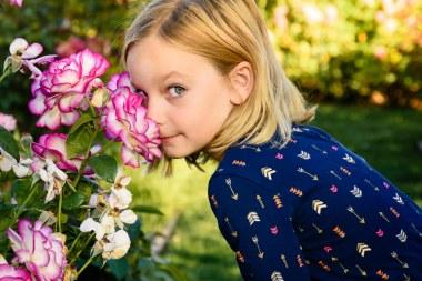 family photography bay area san jose rose garden