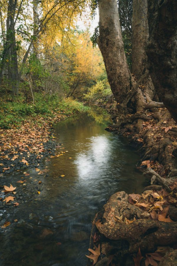 landscape photography mcclellan ranch cupertino rural country bay area creek