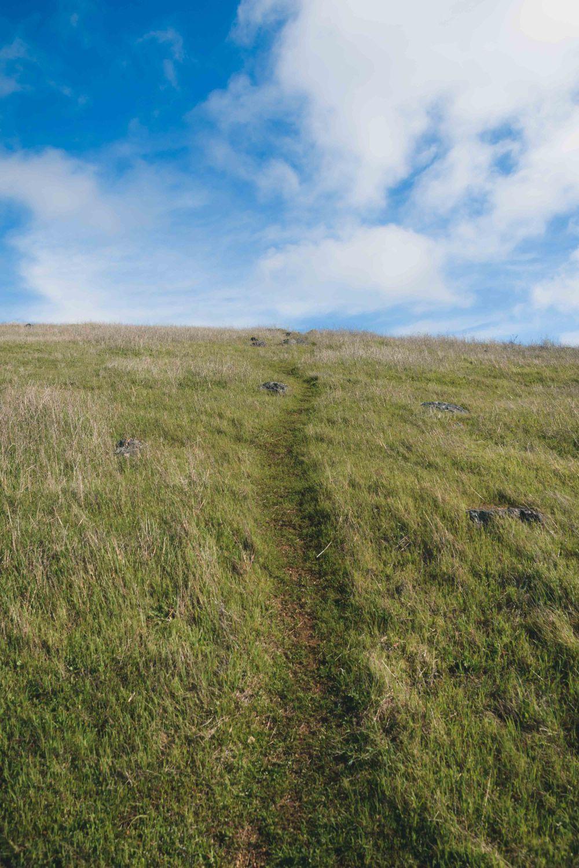 landscape bay area wilderness path sky grass