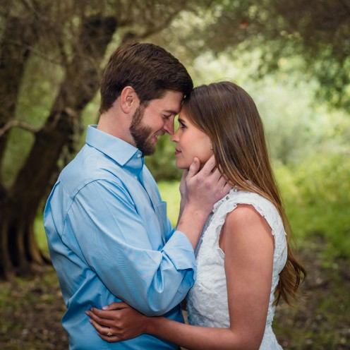 bay area photographer couples engagement photography olive grove foreheads
