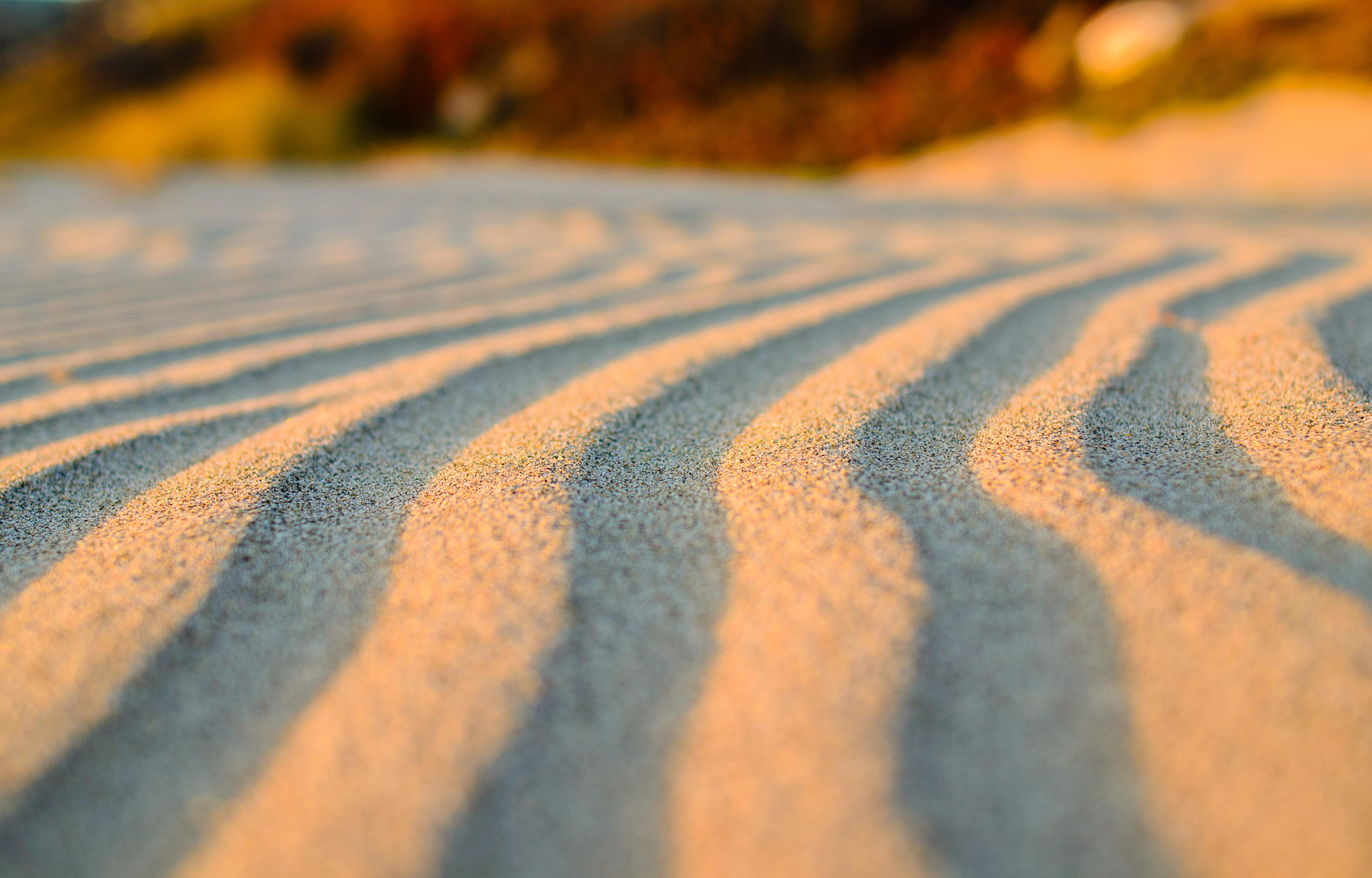 neilson bay area travel landscape photography pajaro dunes sand grooves