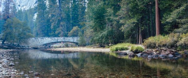 neilson travel landscape photography bay area photographer yosemite stone bridge