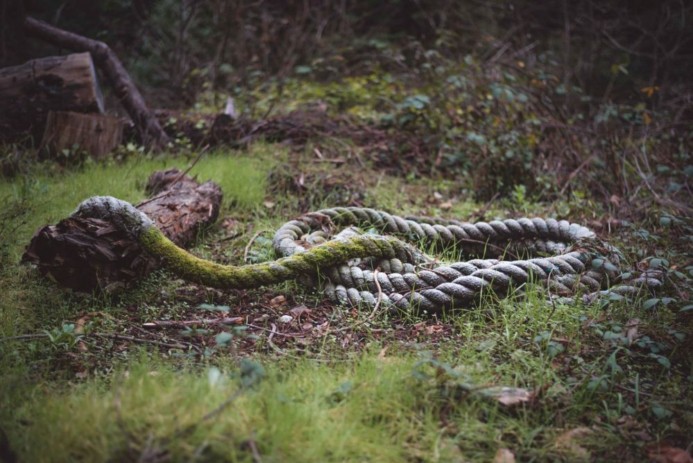 neilson travel photography bay area lahonda apple jacks old line rope
