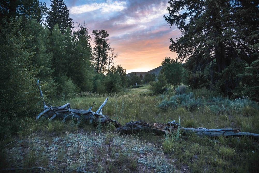 neilson landscape travel photography utah pasture setting sun