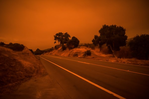 bay area fires Woodside road trees