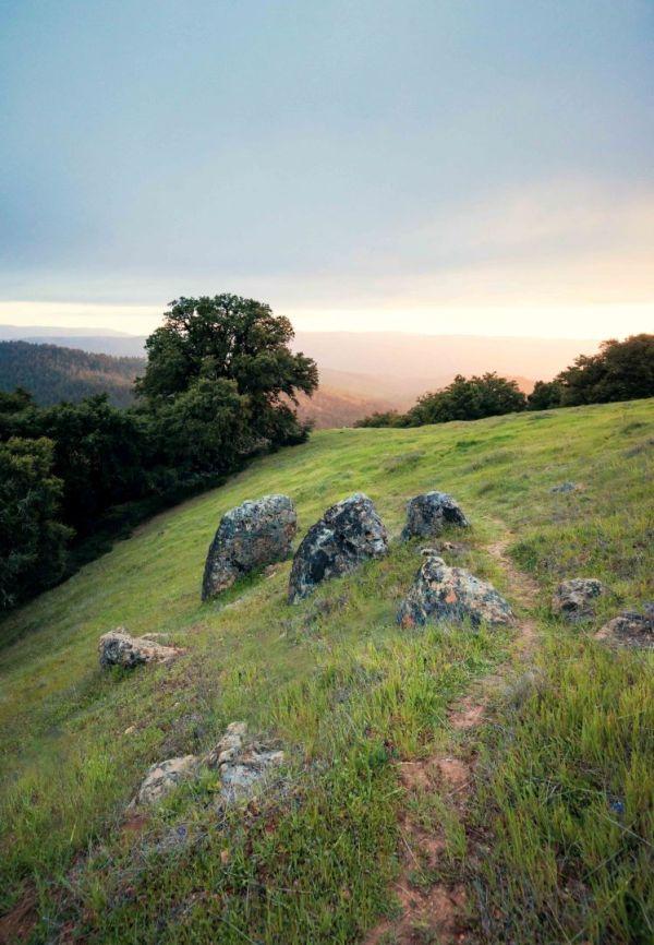 landscape photography bay area california long ridge open space preserve boulders tree path