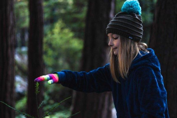Neilson landscape photography california big sur hwy 1 limekiln state park redwood sapling